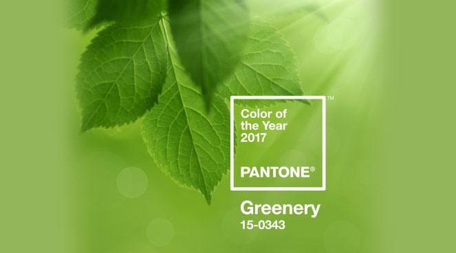 La couleur Pantone de l'année