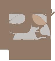 L'Etre Chien Logo